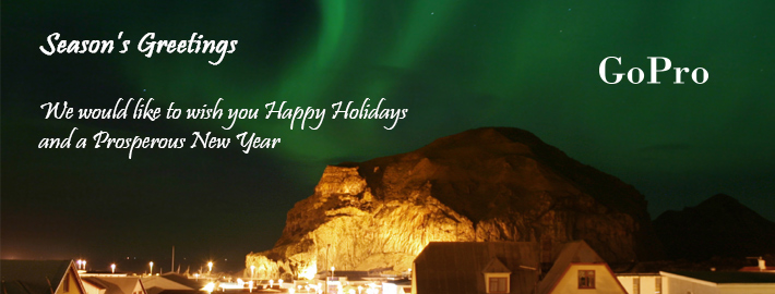 Season's Greetings from GoPro Case Management